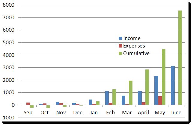Website-Net-Income