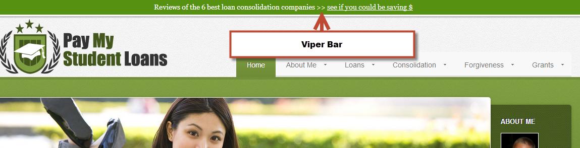 Viper-Bar-Example