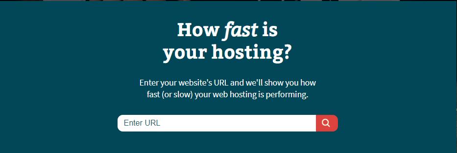 Bitcatcha-website-checker-tool
