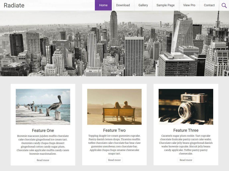 Radiate-free-wordpress-blog-themes