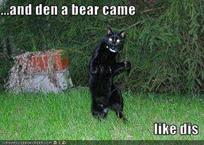 bear-came