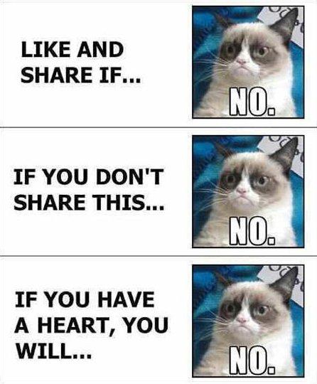 grumpy-cat-facebook-no